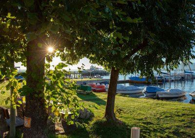 Foto von einem Steg mit Booten, Sonne und Bäumen
